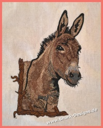 Donkey, the much too little...