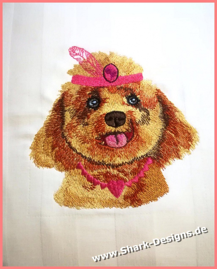 Special Dog 2, the poodle...