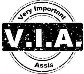Auftragsdigitalisierung V.I.A.