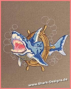 Great white shark, an 11...