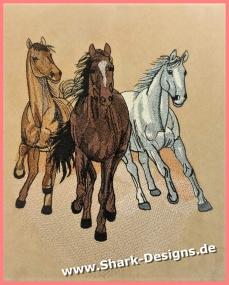 Wild horses in 9 impressive...